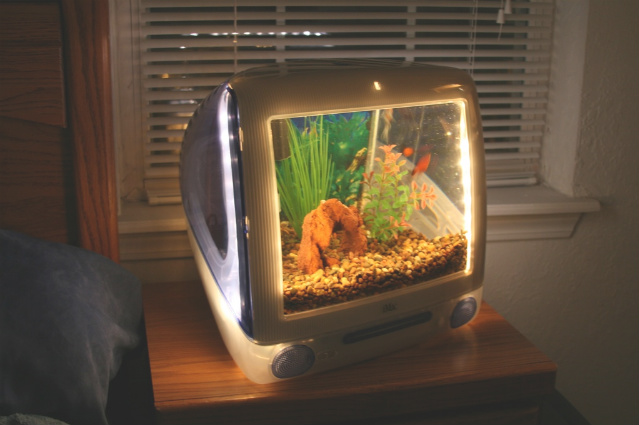 Macquariums aquariums built from imacs applefritter for Mac s fish and chips
