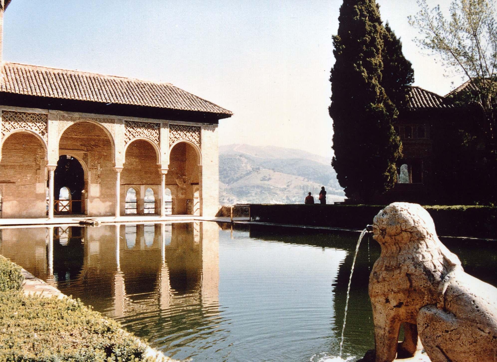 The pool at the Palacio del Partal