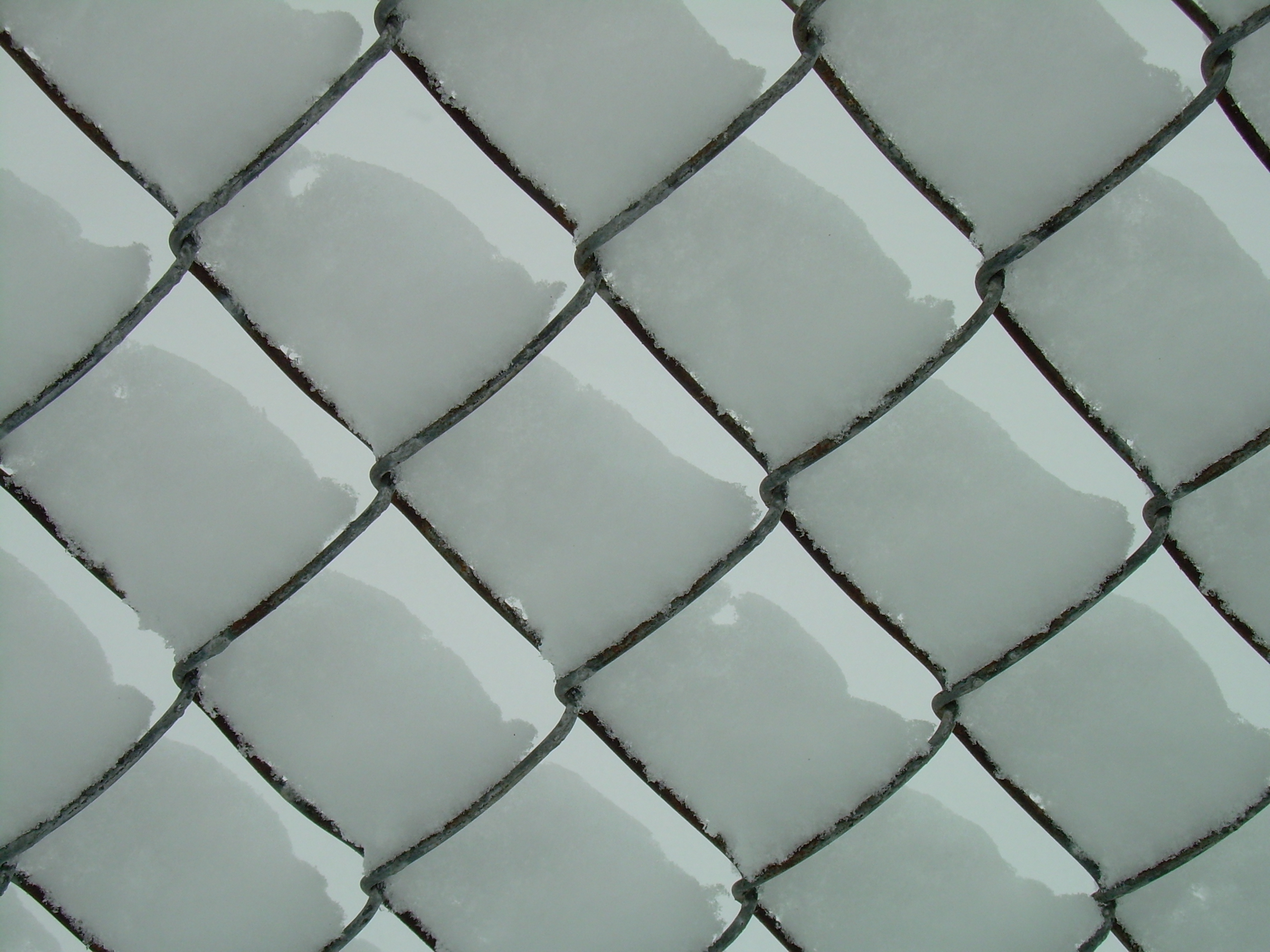 high res snow on a chain link fence applefritter
