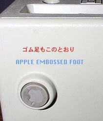 protofoot-259_0.jpg